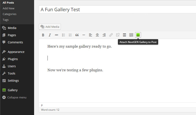 nextgen wordpress gallery plugin images