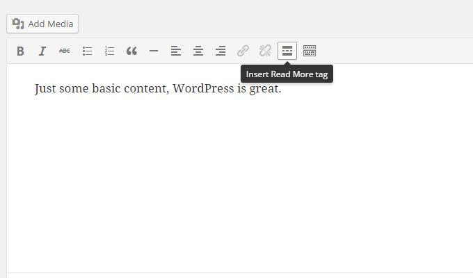 read more visual editor wordpress excerpt